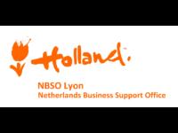 logo-nbso-lyon-800x600