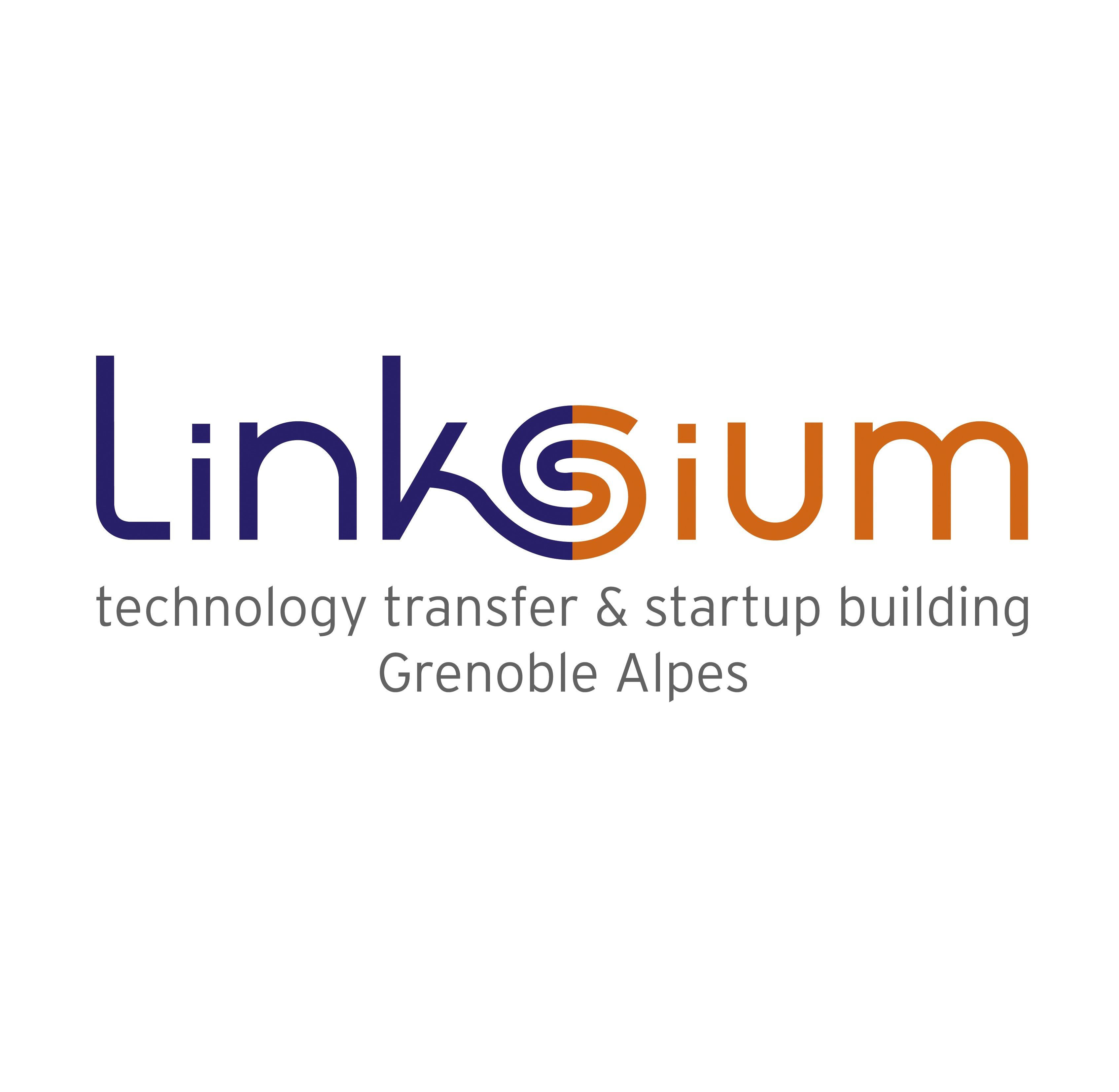 Logo Linksium + baseline